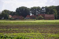Hibben near Uchte, Lower Saxony, Germany