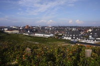 View to Westerland, Sylt, North Sea, North Frisian Island, Schleswig-Holstein, Germany
