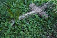 Stone cross lying in grass