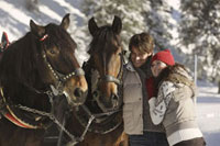 Couple with horses in snow