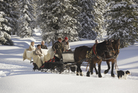 People with sled horses in snow 20025271944| 写真素材・ストックフォト・画像・イラスト素材|アマナイメージズ