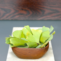 Ginkgo leaves in wooden bowl (Ginkgo biloba)