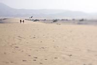 Spain, Canary Islands, Fuerteventura, Corralejo beach, tourists