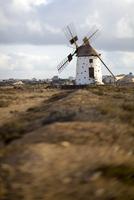 Spain, Canary Islands, Fuerteventura, windmill