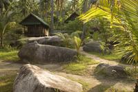 Thailand, Ko Tao, Cabin in the wilderness