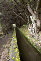 Portugal, Madeira, Levada, traditional Canal irrigation