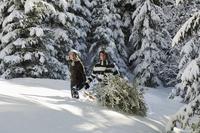 Austria, Salzburger Land, Altenmarkt, Young couple in snowscape, transporting fir tree 20025288847| 写真素材・ストックフォト・画像・イラスト素材|アマナイメージズ