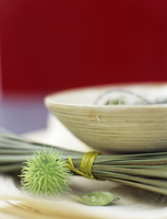 Bunched sedge grass by bowl