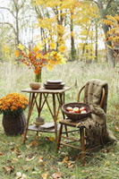 Basket of Apples on Chair in Autumn