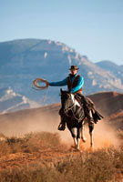 Cowboy with Rope Riding Quarter Horse,Wyoming,USA