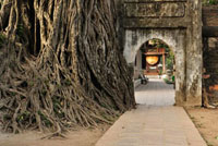 Path�CTemple of Literature�CHanoi�CVietnam