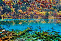 Five Flower Lake in Autumn,Rize Valley,Jiuzhaigou Nation