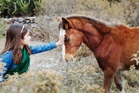 Young Girl Petting a Pony, Mexico