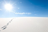 Footprints on Gypsum Dunes, White SandsNational Monument, Ne