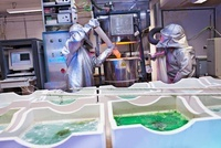 Workers Performing Crystal Melt in Laboratory