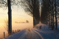 Country Road in Winter, Wolphaartsdijk,Zeeland, Netherlands