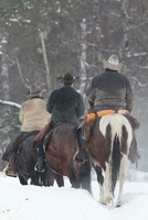 Cowboys Riding Horseback in Snow, Triple D Game Farm, Whitef