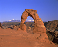 Delicate Arch, Arches National Park, Utah, United States of America, North America