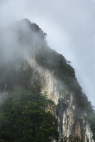 Mountain in Fog, Khao Sok Resort, Surat Thani, Thailand