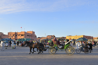 Horse-Drawn Cart, Jemaa el-Fnaa Market Square, Marrakech, Morocco