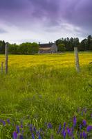 Barn, Sutton, Eastern Townships, Quebec, Canada