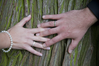 Bride and Groom's Hands on Tree Trunk