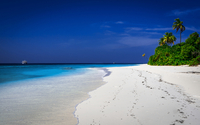 Palm Trees and Tropical Beach with Cruise Ship in Distance, Maldives, Indian Ocean