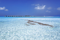 Clear Water and Resort, Suvadiva Atoll, Maldives, Indian Ocean