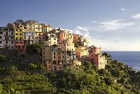 Overview of Corniglia, Cinque Terre, Province of La Spezia, Liguria, Italian Riviera, Italy