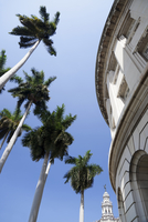 PALMS IN THE BLUE SKY AND BUILDINGS, GRAN TEATRO DE LA HABANA IN BACKGROUND, HAVANA, HAVANA PROVINCE, CUBA