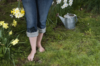 A woman holding bouquet of daffodils standing in her garden next to watering can