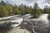 Madawaska River in full spring flood, village of Whitney, Ontario, Canada