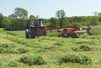 Tractor Cutting Hay Field on Farm near Madoc, Ontario, Canada