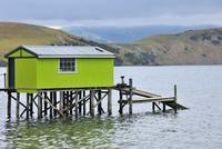 Fishing Hut, Portobello, Otago Region, South Island, New Zealand