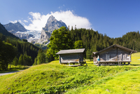 Alpine Huts on Meadow with Mount Wellhorn and Rosenlaui Glacier in the background, Bernese Alps, Switzerland