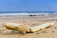 Shipwreck remains, Skeleton Coast, Namib Desert, Namibia, Africa
