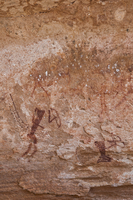 Rock paintings, Twyfelfontein, UNESCO World Heritage site, Damaraland, Kunene Region, Namibia, Africa