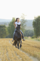 Young Woman Riding a Friesian Horse through threshed Cornfield, Bavaria, Germany