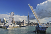 Waitemata Harbour with Wynyard Crossing, Auckland, North Island, New Zealand