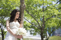 Portrait of Bride Outdoors, Toronto, Ontario, Canada