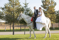 Bride and groom riding white horse together on wedding day, Ontario, Canada 20025317216| 写真素材・ストックフォト・画像・イラスト素材|アマナイメージズ