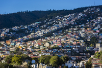 Overview of residences on hill, Valparaiso, Chile
