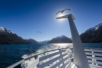 Close-up of tour boat with seagull on lake, Cruce Andino, Nahuel Huapi National Park (Parque Nacional Nahuel Huapi), Argentina