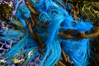 Blue Fishing Net and Chains, Colijnsplaat, Zeeland, Netherlands