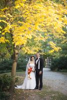 Portrait of Bride and groom standing outdoors next to tree in public garden in Autumn, Ontario, Canada 20025318031  写真素材・ストックフォト・画像・イラスト素材 アマナイメージズ