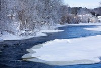 Moira River after Winter Ice Storm, Village of Tweed, Ontario, Canada