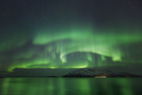 Polar light, Aurora Borealis near Tromvik at night, Kvaloya, Troms, Tromsvik, Norway, Europe