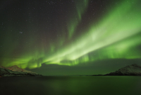 Polar light, Aurora Borealis near Grotfjord at night, Troms, Kvaloya, Norway, Europe
