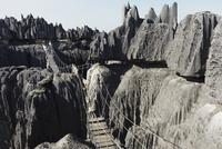 Foot bridge crsooing the Stone Forest, Tsingy of Bemaraha, Madagascar