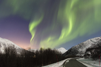 Northern Lights (Aurora Borealis) above Road and Snow Covered Mountains in Arctic, Troms, Norway